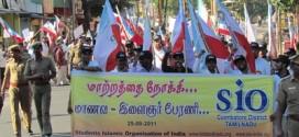 TN-rally0